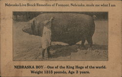 Nebraska Live Stock Remedy Company