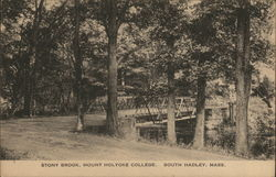 Stony Brook, Mount Holyoke College