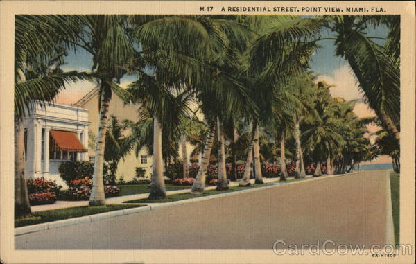 A Residential Street, Point View Miami Florida