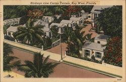Birdseye View Cactus Terrace