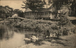 Swan Pond and Dining Porches White Turkey Inn, Danbury Conn.