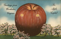 The Apple Capitol Postcard