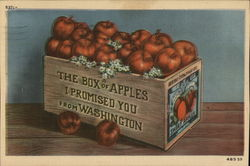 The Box of Apples I Promised You from Washington