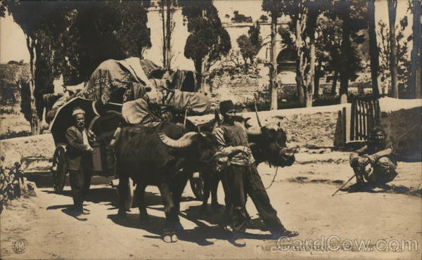 Constantinople. Chariot Ture Arab