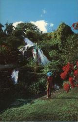 Waterfall in Shaw Park Gardens Postcard