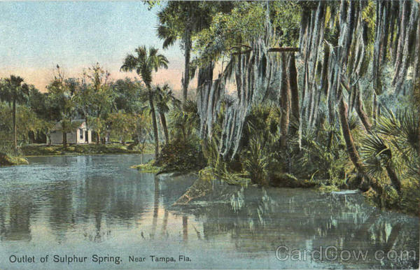 Outlet Of Sulphur Spring Tampa Florida