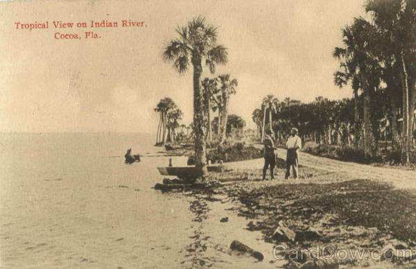 Tropical View On Indian River Cocoa Florida