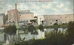 Steeleville Milling Co.'s Flour Mills