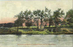 Scene Along The Banks Of Stewart River Postcard