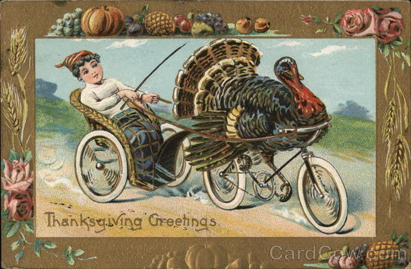 Harness Racing Turkey