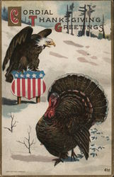 Bald Eagle and Turkey