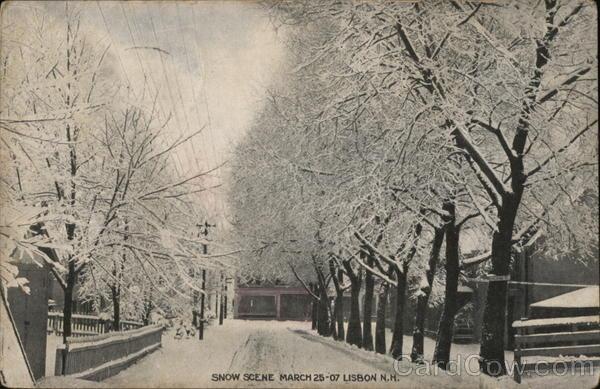 Snow Scene March 25-07 Lisbon New Hampshire