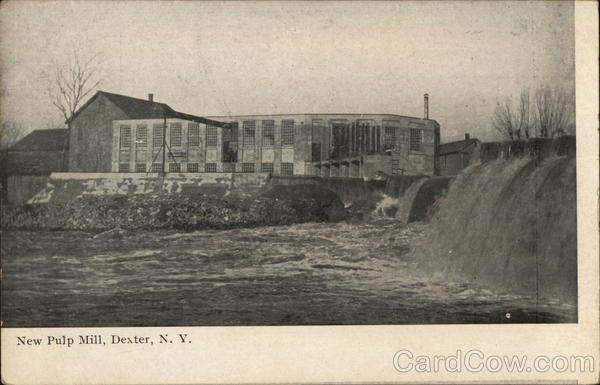 New Pulp Mill Dexter New York