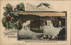 View of Beautiful Twin Falls Postcard