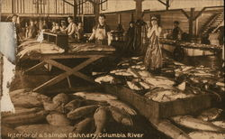 Interior of Salmon Cannery, Columbia River