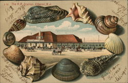 The Railroad Station & Seashells