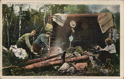 Camp life in the White Mountains Postcard