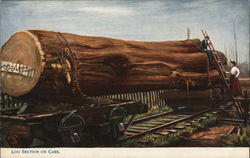 Log Section on Railroad Cars