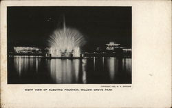 Night View of Electric Fountain, Willow Grove Park