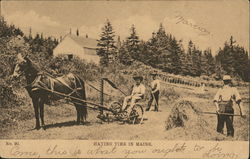 Haying Time In Maine