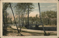 A Beauty Spot in Central Park Postcard