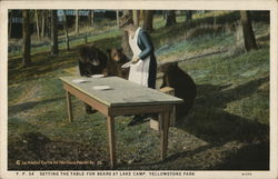 Setting the Table for Bears at Lake Camp