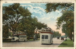 Double Deck Motor Busses on Lincoln Park Drive