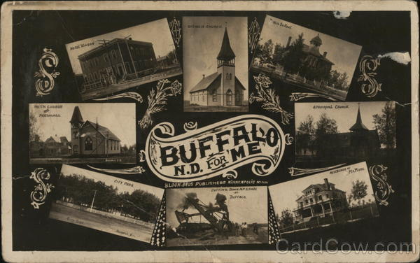 Views of Buffalo Maine