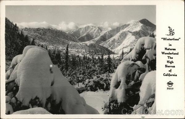 Wintertime in Natures Wonderland, High Sierras