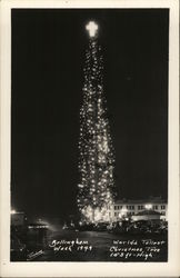 World's Tallest Christmas Tree
