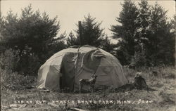 Indian Hut, Itasca State Park Postcard