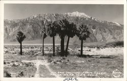 Mount San Jacinto from Seven Palms