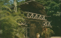 Hall of Giants Gift Shop, McKee Jungle Gardens Postcard