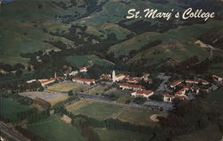 Aerial View of St. Mary's College