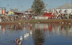 Swan Lake in Old New England Village, The Great Danbury State Fair