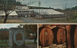 D'Agostini Winery Postcard