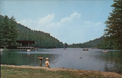 Lake in Vogel State Park