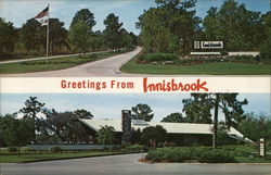 Greetings from Innisbrook Postcard