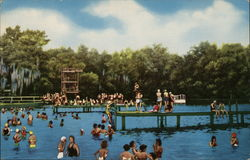 Wakulla Springs Lodge