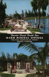 Warm Mineral Springs Postcard