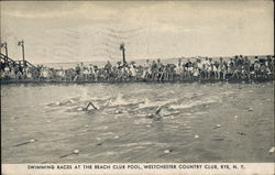 Swimming Races at the Beach Club Pool, Westchester Country Club