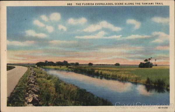 The Florida Everglades, The Tamiami Trail