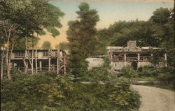Long Trail Lodge of the Green Mountain Club Postcard