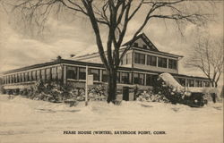 Pease House (Winter)
