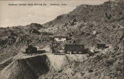 Oatman United Gold Mining Co.