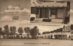 Cactus Motor Lodge Postcard