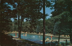 The Swimming Pool Postcard