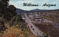 Williams, Arizona Postcard