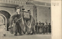 Maharaja's best elephant with Howdah, Jaipur