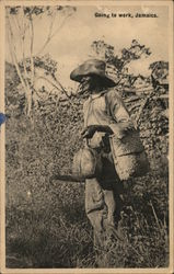 Going to work, Jamaica Postcard